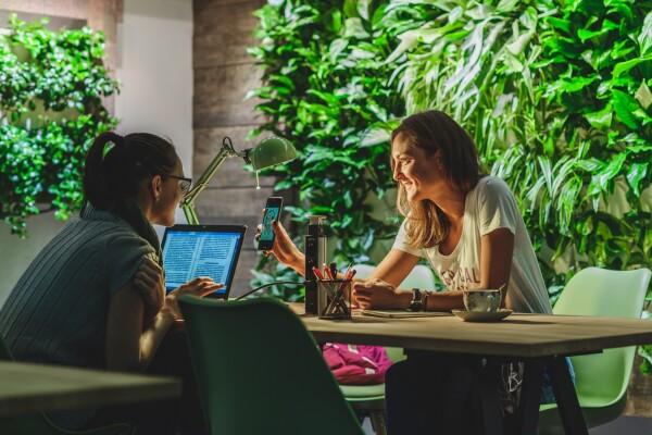 Eco-office közösségi iroda